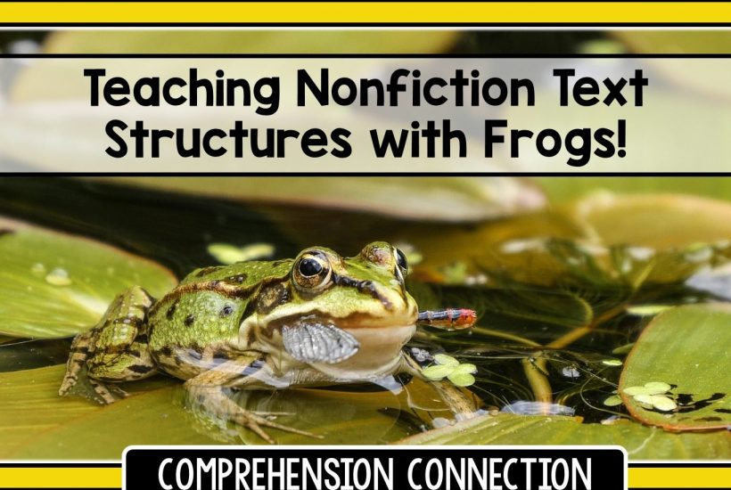 frogs-4222707