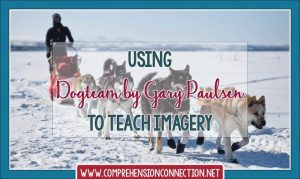 Read more about the article Creating Imagery with Dogteam by Gary Paulsen