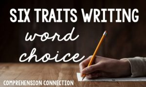 Read more about the article Building Writing Skills with a Focus on Word Choice