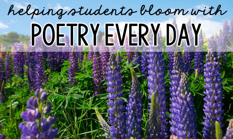 Read more about the article Using Poem of the Week for More than Fluency