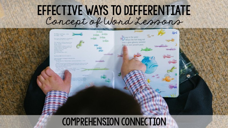 Read more about the article 8 Effective Ways to Differentiate Concept of Word Lessons